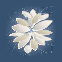 white stone petals von feiermar
