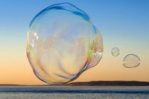 Large Soap Bubble von Jim Corwin