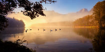 Schwanensee by photoplace