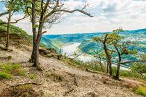 Felsmassiv am Mittelrhein 09 von Erhard Hess