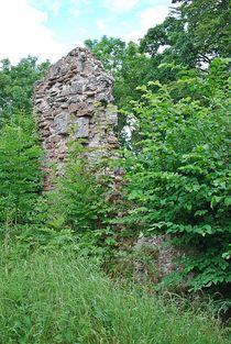 Ruine Homburg... 3 von loewenherz-artwork