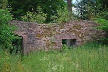 Ruine Homburg... 4 von loewenherz-artwork