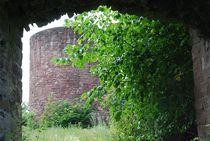 Ruine Homburg... 5 von loewenherz-artwork