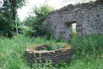 Ruine Homburg... 1 von loewenherz-artwork