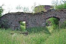 Ruine Homburg... 6 von loewenherz-artwork