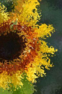 Sonnenblume 1 von alana
