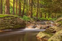 Schwarzwassertal im Erzgebirge von Astrid Steffens