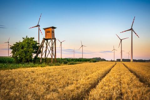 Wind-turbine-big