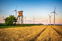 Wind turbine among golden ears of grain crops von Zoltan Duray
