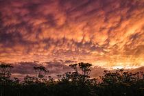 Gewitterstimmung mit Mammatuswolken über dem Hegau bei Stockach II by Christine Horn
