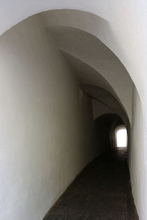 The end of the tunnel von feiermar