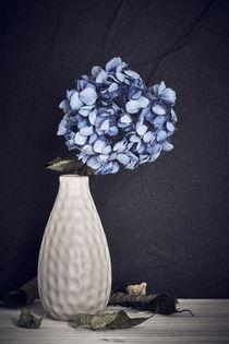 Blaue Hortensie in einer Vase von sven-fuchs-fotografie