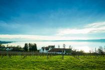 Blick von Birnau auf das Südufer des Bodensees von sven-fuchs-fotografie