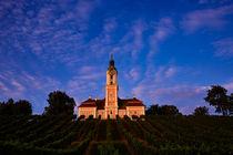 Basilika Birnau im Abendlicht inmitten der Weinberge von sven-fuchs-fotografie