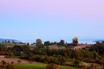 Blick über Wiesen und Felder auf den Bodensee by sven-fuchs-fotografie