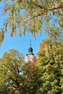 Kirchturm Basilika Birnau zwischen Laubbäumen von sven-fuchs-fotografie