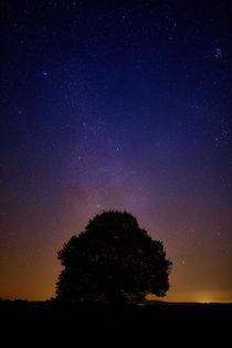 Sternenhimmel mit einzelnem Baum als Silhouette von sven-fuchs-fotografie