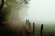 Feldweg im Nebel von Ralf Eckert
