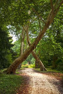 Schlosspark Herten 10.2 von Petra Dreiling-Schewe