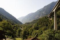 Gotthard von Thomas  Heßmann