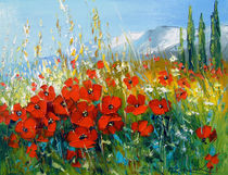 Summer poppies  by Olha Darchuk