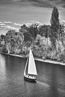 Auf  dem Rhein von Stefan Zimmermann