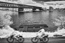 Am Rhein bei Mainz von Stefan Zimmermann