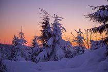 Sonnenuntergang am Fichtelberg von Stefan Weber