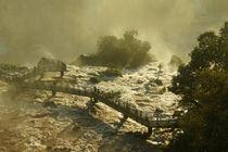 Wasserfälle von Iguazu 1 by Sabine Radtke