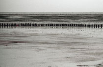 Sylt, Wadden Sea - 6 by Thomas Anton Stribick