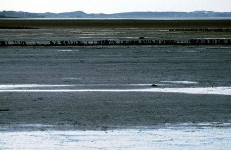 Sylt-07-2007-030