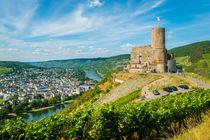 Burg Landshut-Bernkastel 53 by Erhard Hess