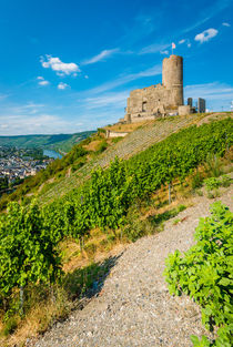 Burg Landshut-Bernkastel 98 by Erhard Hess