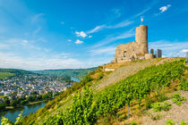 Burg Landshut-Bernkastel 92 by Erhard Hess