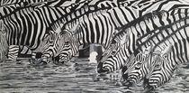 Zebras am Wasser by Erich Handlos