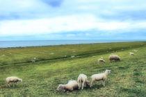 Die  Rasenmäher von Hindeloopen von garrulus-glandarius