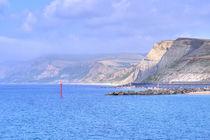 West Cliff near West Bay, Dorset. by Malc McHugh