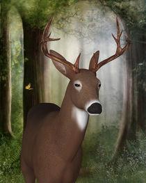 Im Wald by Conny Dambach