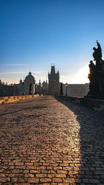 Morning on Charles Bridge by Tomas Gregor