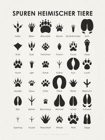 Tierspuren (3:4) von Iris Luckhaus