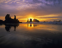 Face Rock Beach Bandon Oregon State  by Jim Corwin