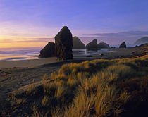 Cape Sebastian State Park Southern Oregon Coast by Jim Corwin