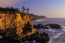 Southern Oregon Coast Shore Acres State Park  by Jim Corwin