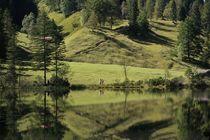 Gebirgslandschaft in Grün von Frank  Kimpfel