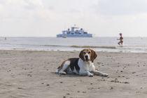 Urlaub auf Norderney / 4 von Heidi Bollich
