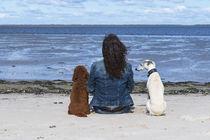 An der Nordsee / 3 by Heidi Bollich