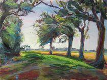 Wind in den Bäumen von Renée König