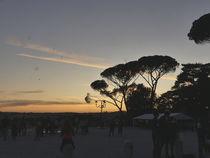 Terasse mit Blick zur Piazza del Popolo von Caro Rhombus van Ruit