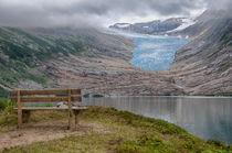 Blick auf den Svartisen Gletscher by Iris Heuer
