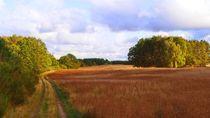 Landschaft in der Uckermark-1 by Heidrun Carola Herrmann